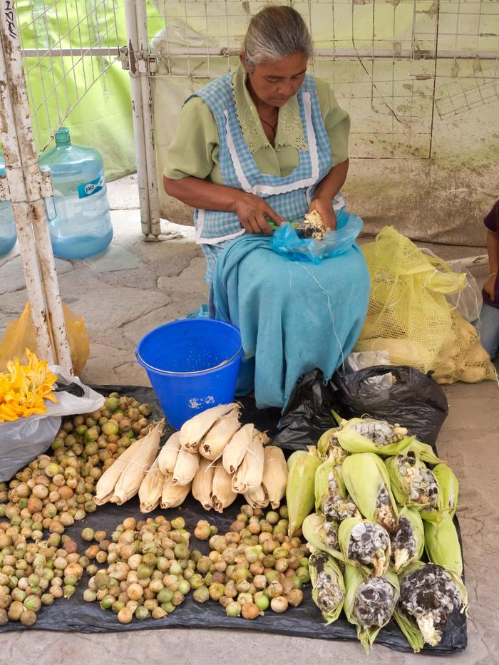 [Thumbnail for EDIBLE-Mexican_Truffles-_huitlacoche_(Ustilago_maydis)-_merchant_woman_in_Guanajuato_by_Tomascastelazo-_WikiMedia.org.jpg]