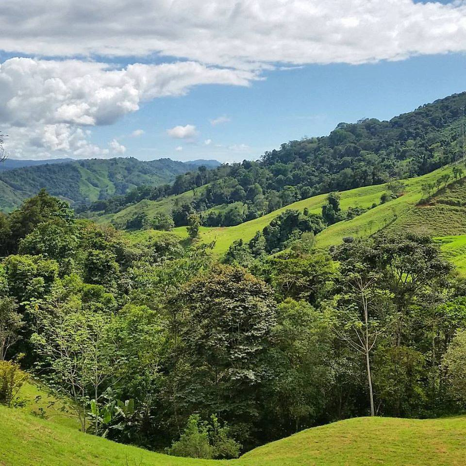Volunteer in Costa Rica at Earth Ayni! (volunteer offerings forum at