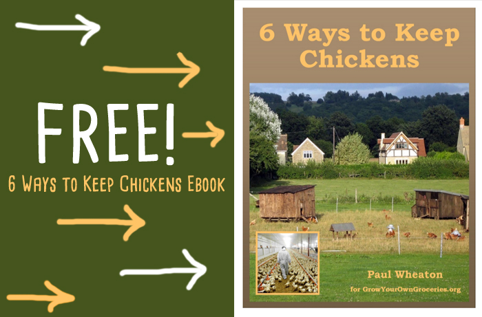 6 Ways to Keep Chickens ebook by Paul Wheaton, paddock shift, chicken tractors, free range