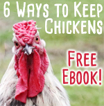 6 ways to keep chickens ebook by Paul Wheaton