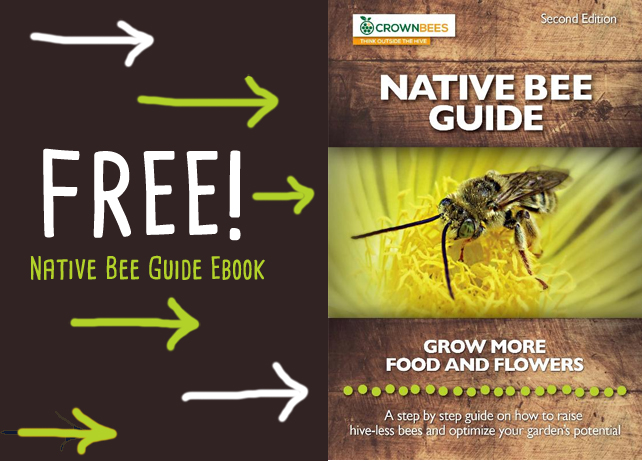 native bee guide ebook by Crown Bees, mason bees, leafcutters