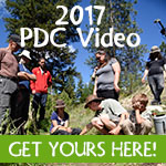 online permaculture design course