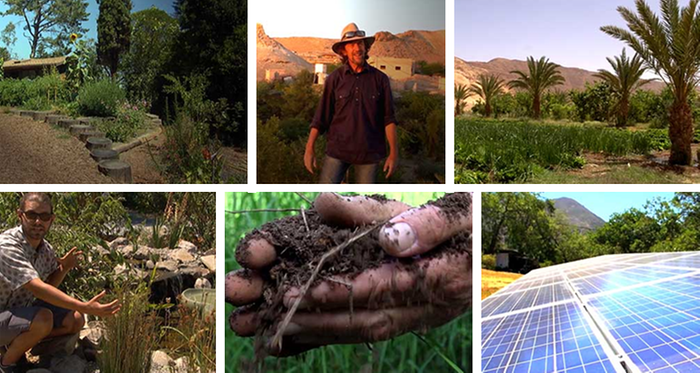 geoff lawton, california, abundance on dry land documentary