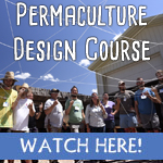 Online permaculture desi video