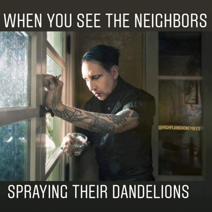 [Thumbnail for dandelions-spraying.jpg]