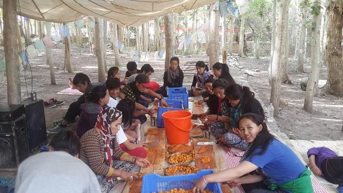[Thumbnail for SECMOL-Apricot-jam-picnic-chopping-fruit-by-NidhiSable.jpg]