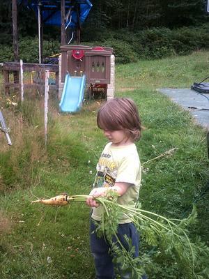 child with Lofthouse Landrace Carrot