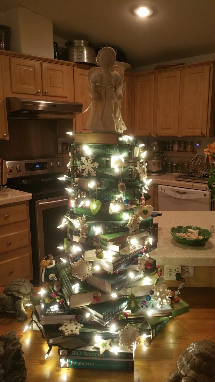 [Thumbnail for Christmas-tree-of-books-decorated.jpg]