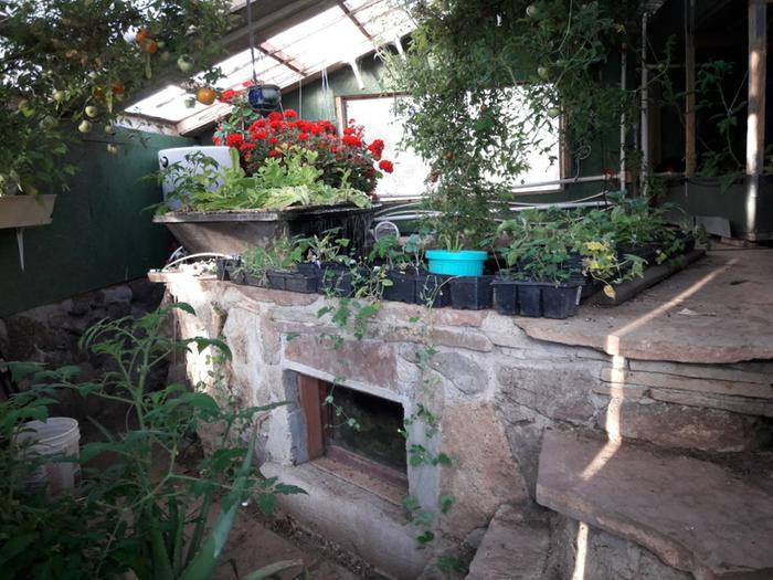 [Thumbnail for Brians-Masonry-aquaponics-north-side-3-June-10th-2018.jpg]