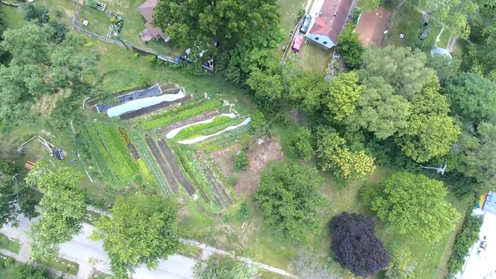 [Thumbnail for Drone-shot-of-market-garden.png]