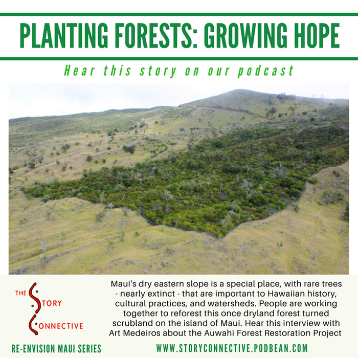 [Thumbnail for MEME-Planting_Forests_-_Growing_Hope_-_Art_Medeiros_(StoryConnective.org).png]