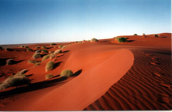 [Thumbnail for Sand-Dunes-Outskirts-of-Arrabury-Station.jpg]