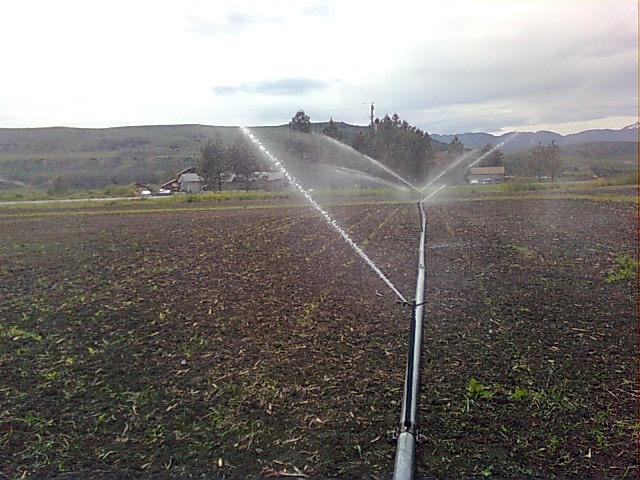 [Thumbnail for irrigation-2011-06-18.jpg]