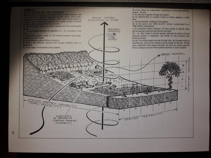 [Thumbnail for Permaculture-Big-Book-page-27.jpg]
