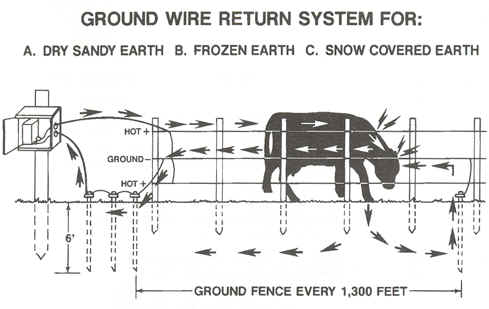[Thumbnail for Ground-electric-fence.jpg]