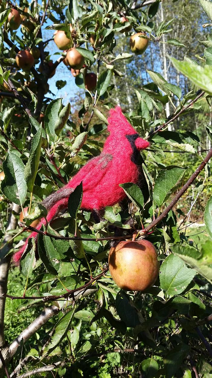 needle-felted cardinal in red apple tree