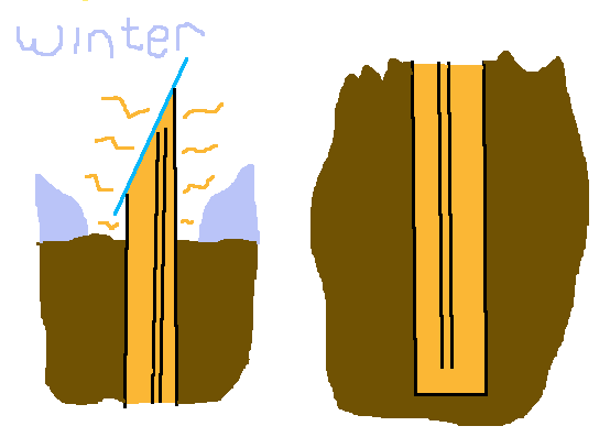 [Thumbnail for passive-garden-heater-winter.png]