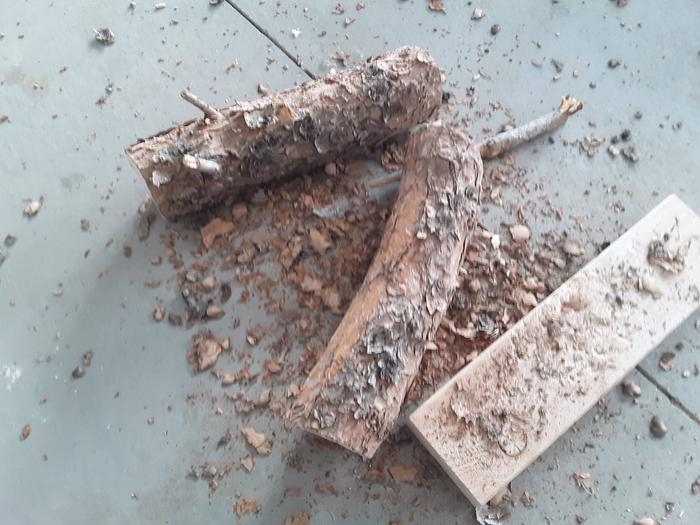 wood cut to length for making a mallet